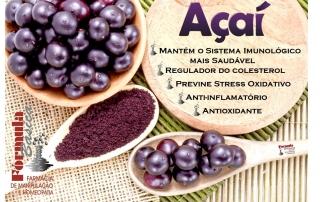 açai_formulabasica